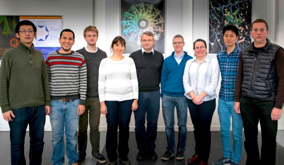 From left: Rui-Gang Xu, Juan Loredo-Varela, Maria Chechik, Fred Antson, Huw Jenkins, Sandra Greive, Herman Fung, Vladimir Ledikov